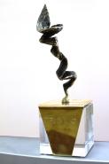 Бизнес-премия в сфере услуг Триумф