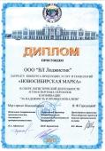 small_diplom_novosib11.jpg